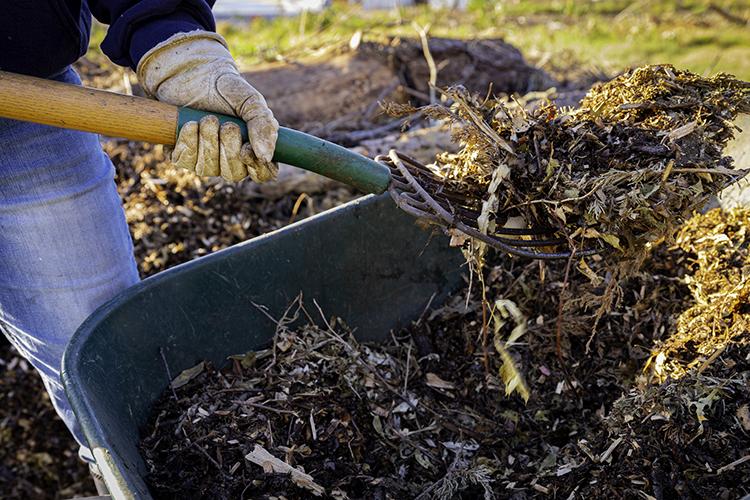 Gestione dei rifiuti in agricoltura, martedì la firma sull'accordo di programma in Puglia